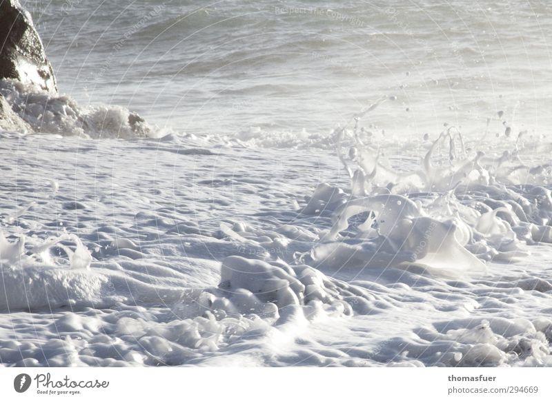 Cappuccino Atlantik Natur Ferien & Urlaub & Reisen Sommer Wasser weiß Sonne Meer Freude Strand Bewegung Küste Felsen Freizeit & Hobby frisch Wellen Wind