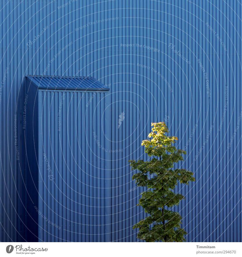 Lichtblick   Kopfsache. blau grün Baum Gefühle Gebäude Metall Linie Fassade Wachstum ästhetisch einfach erleuchten Industrieanlage Laubbaum Saarbrücken