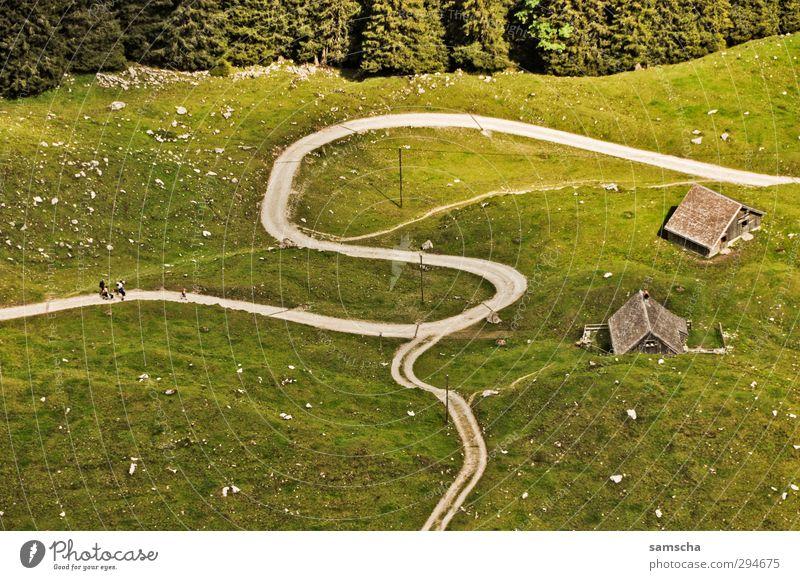 Irrweg 2 Natur Ferien & Urlaub & Reisen grün Sommer Landschaft Wald Umwelt Berge u. Gebirge Wiese Wege & Pfade Freiheit wandern Tourismus Ausflug Abenteuer
