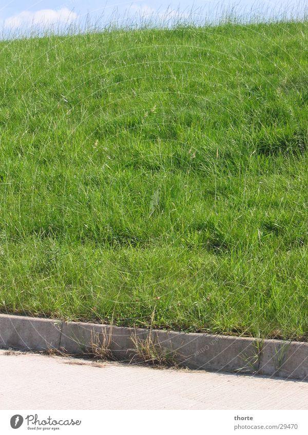 Elbdeich Himmel grün Gras Asphalt Elbe Deich