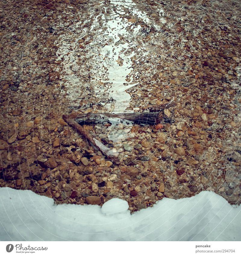 lichtblick | das große schmelzen Natur Landschaft Urelemente Sand Wasser Frühling Schnee Bach beobachten Bewegung träumen Zufriedenheit Hoffnung Klima Leben
