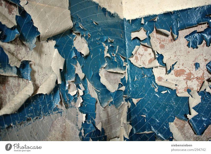 Oh je, ich sollte doch mal renovieren! blau alt Haus Wand Senior Mauer Gebäude Stein Arbeit & Erwerbstätigkeit Raum Wohnung dreckig kaputt einzigartig streichen