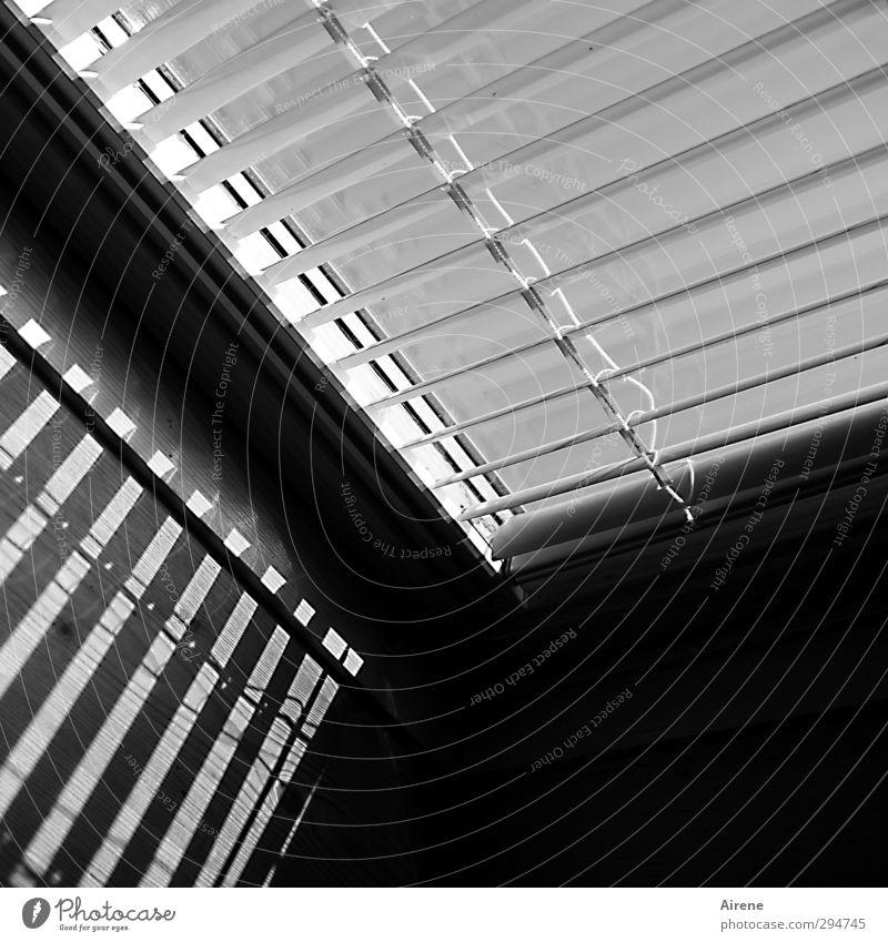 Strichcode Wohnung Innenarchitektur Raum Dachfenster Jalousie Dachschräge Scanner Informationstechnologie Fenster offener Dachstuhl Linie Streifen eckig schwarz