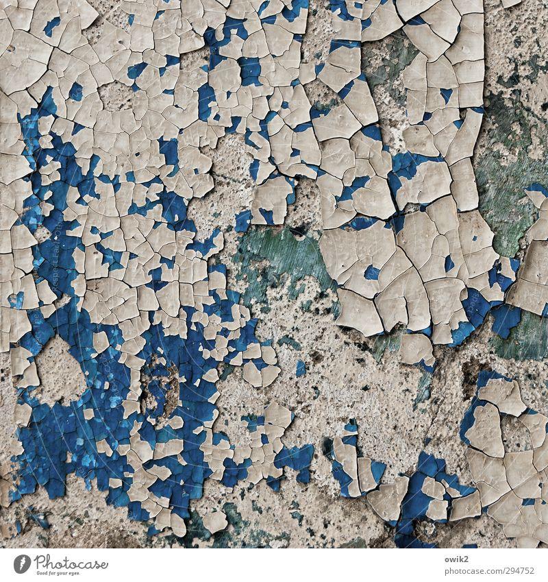 Wand Art blau alt weiß Farbe Mauer grau klein verrückt Wandel & Veränderung Vergänglichkeit viele Netzwerk Unendlichkeit Textfreiraum Teile u. Stücke