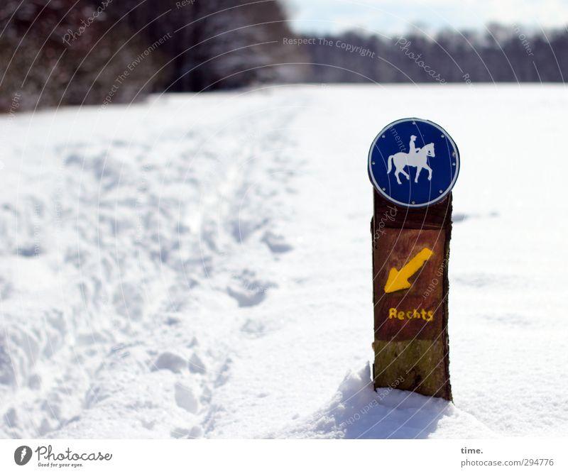Wege & Pfade | Keine Peilung Winter Schönes Wetter Schnee Wald Zeichen Schriftzeichen Schilder & Markierungen kalt lustig verrückt Übermut Volksglaube falsch