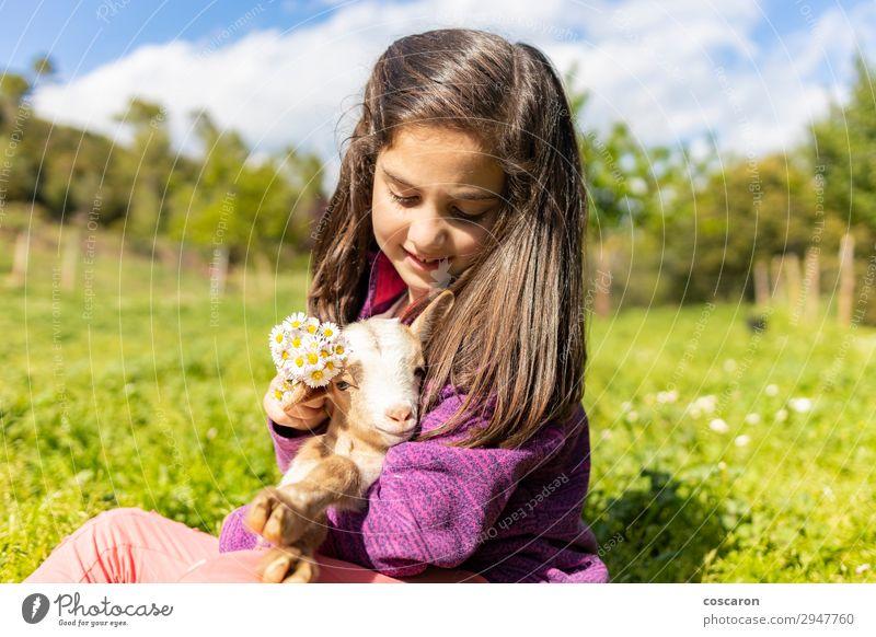 Süßes kleines Mädchen, das Blumen auf einen Kopf setzt. Lifestyle Freude Glück schön Sommer Garten Kind Mensch feminin Baby Kleinkind Frau Erwachsene