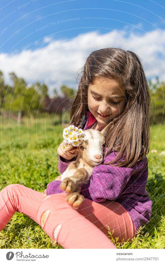 Süßes kleines Mädchen, das Blumen auf einen Kopf setzt. Lifestyle Freude Glück schön Ferien & Urlaub & Reisen Sommer Sommerurlaub Garten Kind Mensch feminin