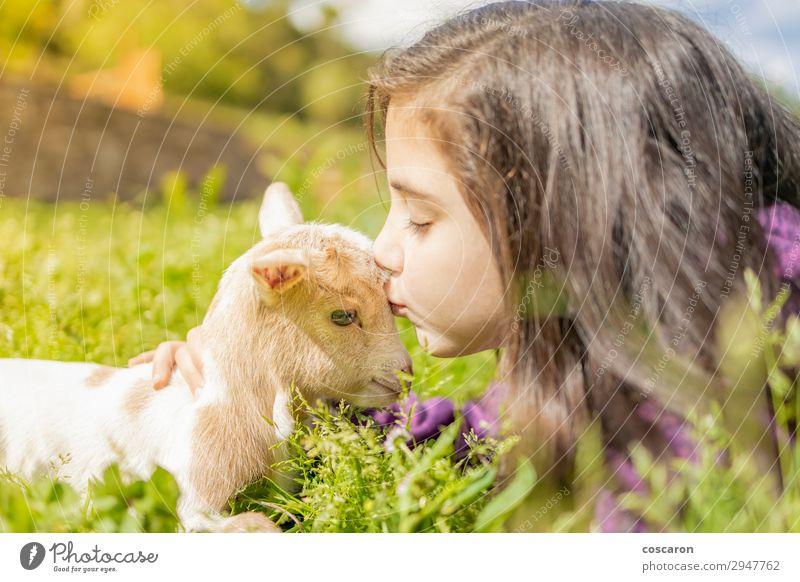Kleines Mädchen küsst eine Ziege. Nahaufnahme Lifestyle Glück schön Erholung ruhig Freizeit & Hobby Spielen Ferien & Urlaub & Reisen Sommer Sommerurlaub Garten