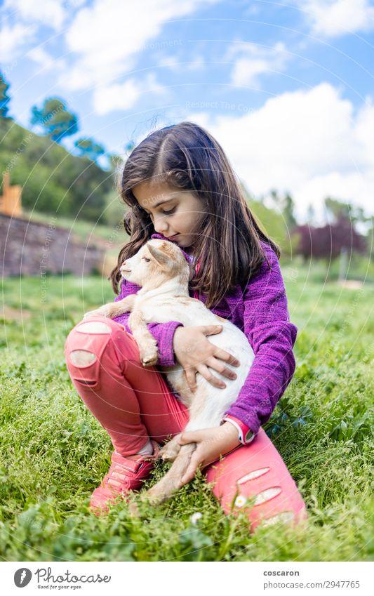 Kleines Mädchen umarmt eine Ziege auf einem Feld. Lifestyle Glück schön Freizeit & Hobby Spielen Ferien & Urlaub & Reisen Tourismus Sommer Garten Kind Mensch