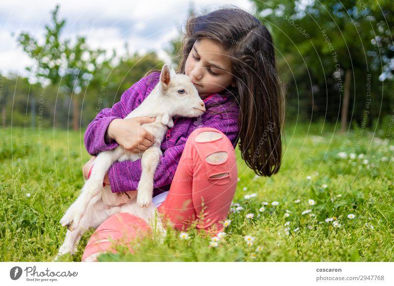 Kleines Mädchen umarmt eine Ziege auf einem Feld. Lifestyle Glück schön Freizeit & Hobby Spielen Sommer Garten Kind Azubi Mensch feminin Baby Kleinkind Frau