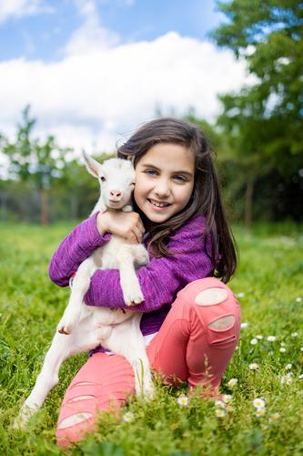 Kleines Mädchen umarmt eine Ziege auf einem Feld. Lifestyle Glück schön Freizeit & Hobby Spielen Ferien & Urlaub & Reisen Sommer Sommerurlaub Garten Kind