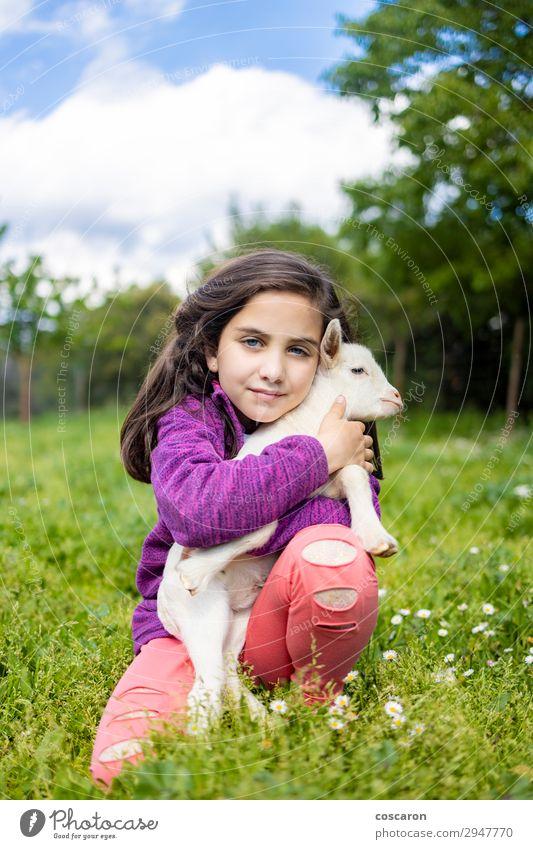 Kleines Mädchen umarmt eine Ziege auf einem Feld. Lifestyle Glück schön Freizeit & Hobby Spielen Sommer Sommerurlaub Garten Kind Mensch Baby Kleinkind Frau