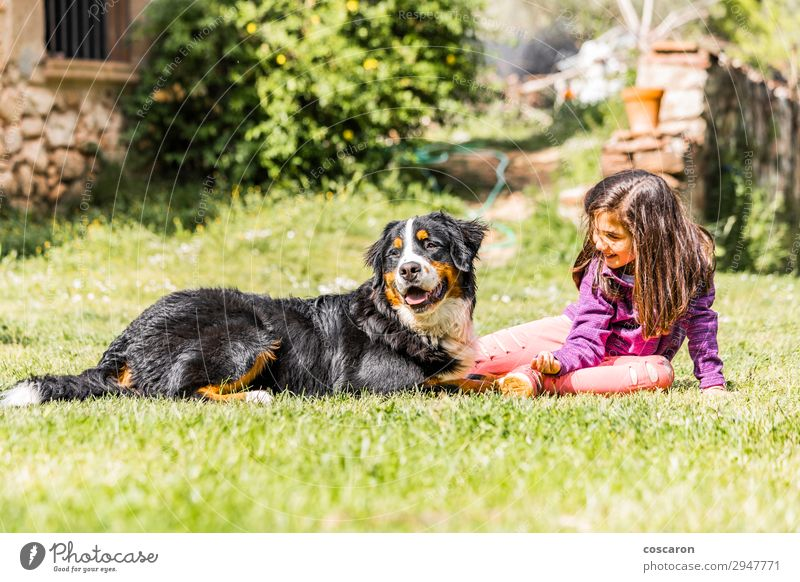 Kleines Mädchen mit einem Berner Sennenhund Lifestyle Freude Glück Freizeit & Hobby Spielen Sommer Berge u. Gebirge Garten Kind Mensch feminin Kleinkind Junge