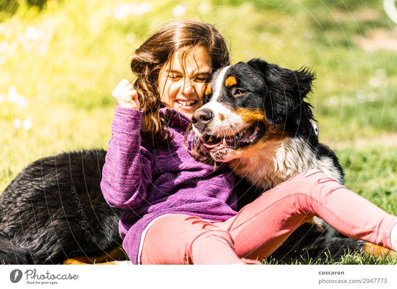 Kleines Mädchen mit einem Berner Sennenhund Lifestyle Freude Glück Leben Freizeit & Hobby Spielen Ferien & Urlaub & Reisen Sommer Berge u. Gebirge Kind Mensch