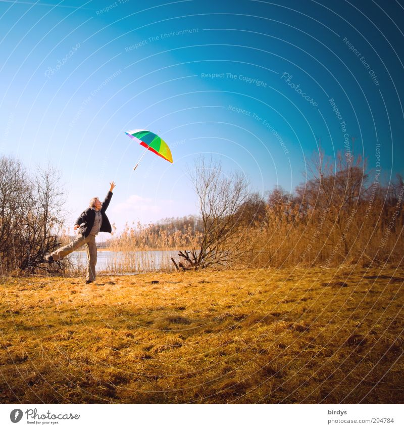 Luftnummer Freude maskulin Mann Erwachsene 1 Mensch 30-45 Jahre Natur Himmel Herbst Schönes Wetter Wind Sturm Wiese Seeufer Regenschirm springen außergewöhnlich
