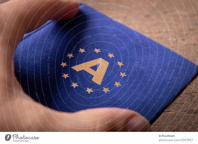 Europäisch Wirtschaft Handel Business Team Finger Zeichen wählen gebrauchen festhalten frei Zusammensein blau gold Solidarität Gesellschaft (Soziologie) Zukunft