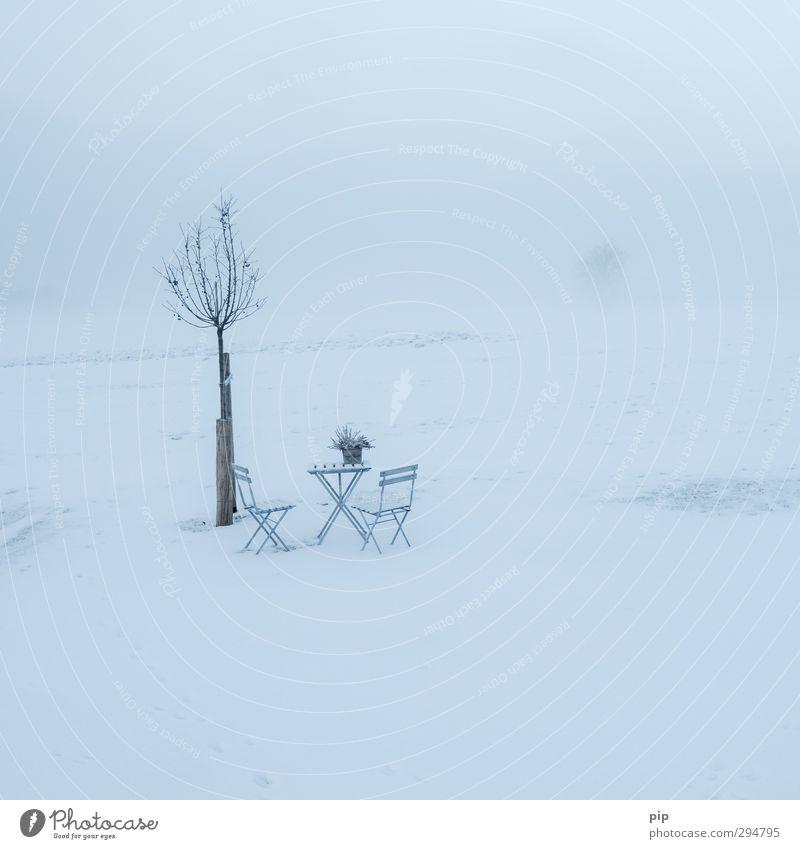 frühlingsanfang ohne anfang Umwelt Natur Landschaft Horizont Frühling Winter Klimawandel schlechtes Wetter Eis Frost Schnee Baum Wiese kalt Stuhl Tisch