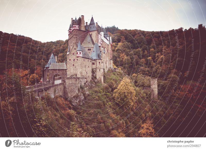 Burg Eltz Tourismus Städtereise Herbst Wald Hügel Burg oder Schloss Bauwerk Gebäude Sehenswürdigkeit Wahrzeichen Denkmal alt bedrohlich Bekanntheit historisch