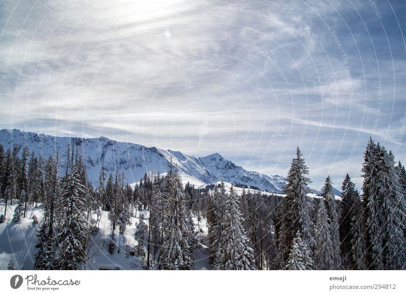 Winterlandschaft Natur blau weiß Landschaft Winter Wald Umwelt Berge u. Gebirge kalt Schnee natürlich Schönes Wetter Alpen
