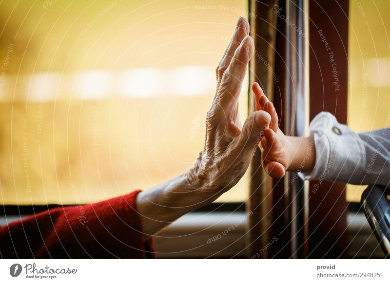Give me Fife schön Seniorenpflege Zufriedenheit Muttertag Hochzeit Kindererziehung Ruhestand Feierabend Mensch Kleinkind Frau Erwachsene Großeltern Großmutter
