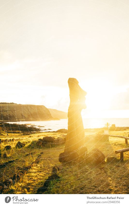 MOAI - Osterinsel - Sunrise Natur gelb Küste braun Stimmung gold Statue bauen Klippe faszinierend errichten Steinmännchen Osterinseln