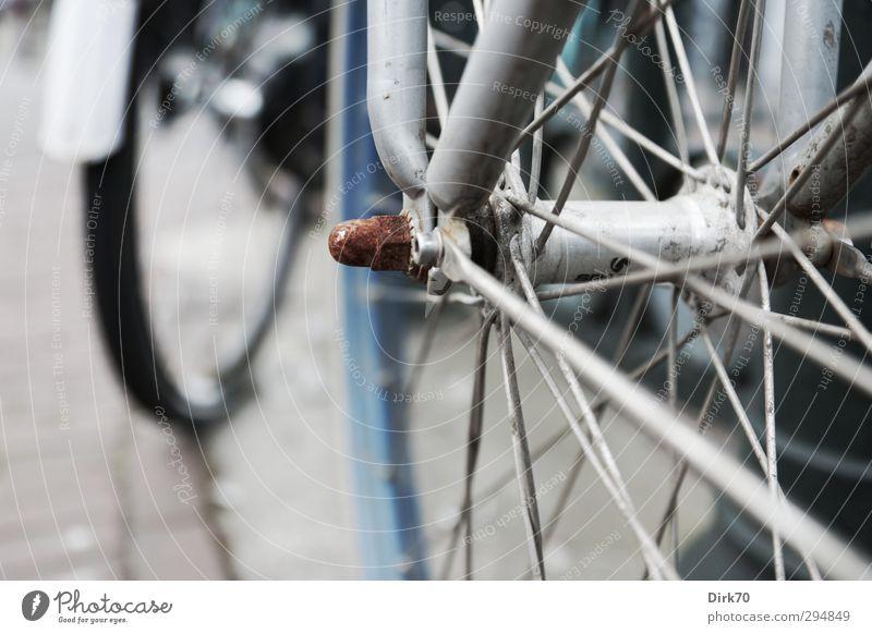 Rasten und rosten in Amsterdam ... Stadt alt blau rot dunkel schwarz Straße grau Stein Metall Verkehr dreckig Fahrrad trist stehen warten