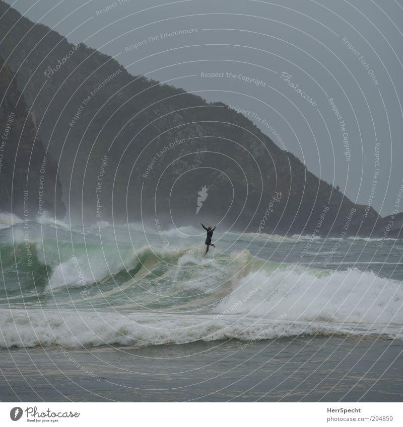 Abflug Natur grün Wasser Meer Strand Küste grau fliegen Wellen wild Urelemente bedrohlich fallen Sturz Sturm Surfen