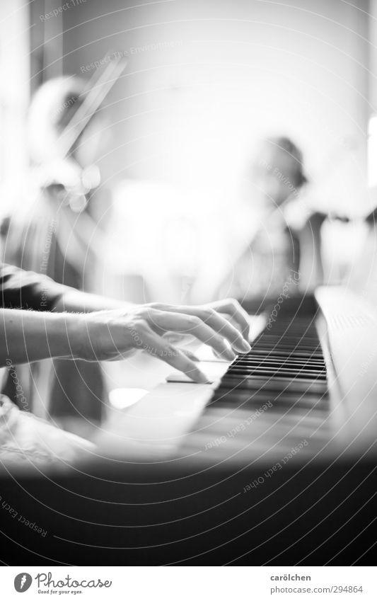 Musik Mensch weiß Hand schwarz Zusammensein Finger Musikinstrument Klavier Musiker Geige musizieren