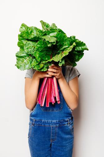 Veganes Mädchen hält einen Haufen Schweizer Cahrd. Gemüse Ernährung Vegetarische Ernährung Diät Kind Blatt frisch natürlich grün rot weiß Mangold