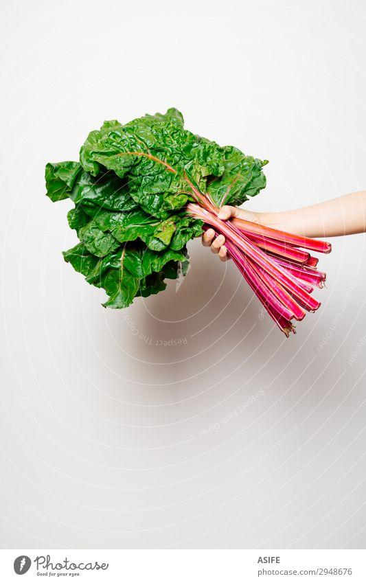 Arm eines Mädchens, das einen Haufen Schweizer Mangold hält. Gemüse Ernährung Vegetarische Ernährung schön Kind Frau Erwachsene Arme Hand Blatt frisch grün rot