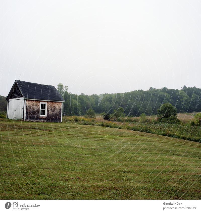 New England. Umwelt Natur Gras Garten Kleinstadt Stadtrand Menschenleer Haus Hütte Fassade alt kalt Farbfoto Außenaufnahme Tag Licht