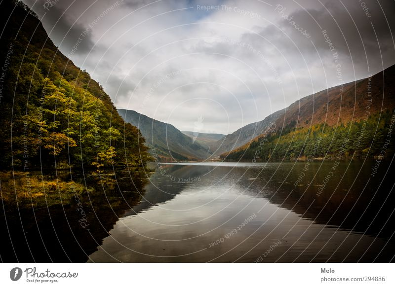 heavenly nature Natur Luft Wasser Himmel Herbst Baum Wald Hügel Berge u. Gebirge Seeufer dunkel braun grün orange ruhig Abenteuer Farbfoto Außenaufnahme