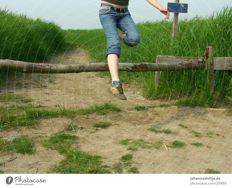 jump II springen Hochsprung