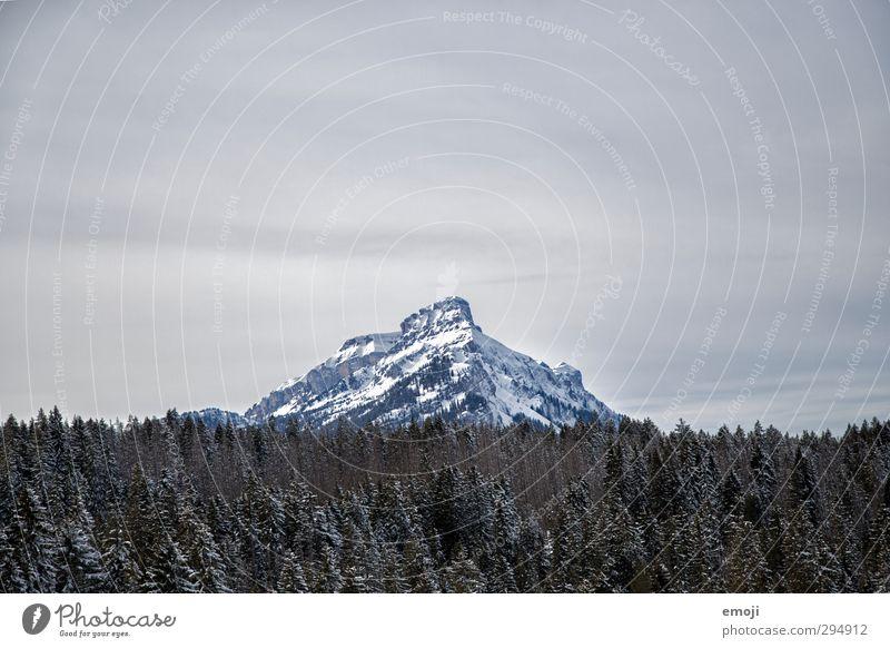 bis dorthin Umwelt Natur Winter Schnee Wald Alpen Berge u. Gebirge Gipfel Schneebedeckte Gipfel kalt weiß Farbfoto Außenaufnahme Menschenleer Textfreiraum oben