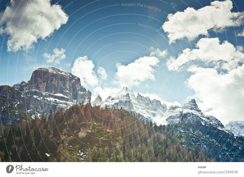 Höhenfieber Himmel Natur blau Ferien & Urlaub & Reisen Landschaft Wolken Wald Umwelt Berge u. Gebirge Frühling Felsen außergewöhnlich Klima groß Schönes Wetter Urelemente