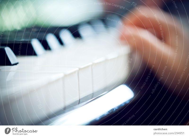 Musik Klavier blau Klaviatur musizieren Musikschule Musikunterricht Farbfoto Innenaufnahme Detailaufnahme Makroaufnahme Menschenleer Schwache Tiefenschärfe