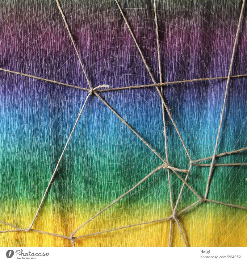 verschnürt... Papier Verpackung Paket Dekoration & Verzierung Schnur Knoten Netzwerk ästhetisch außergewöhnlich einfach einzigartig blau mehrfarbig gelb grau