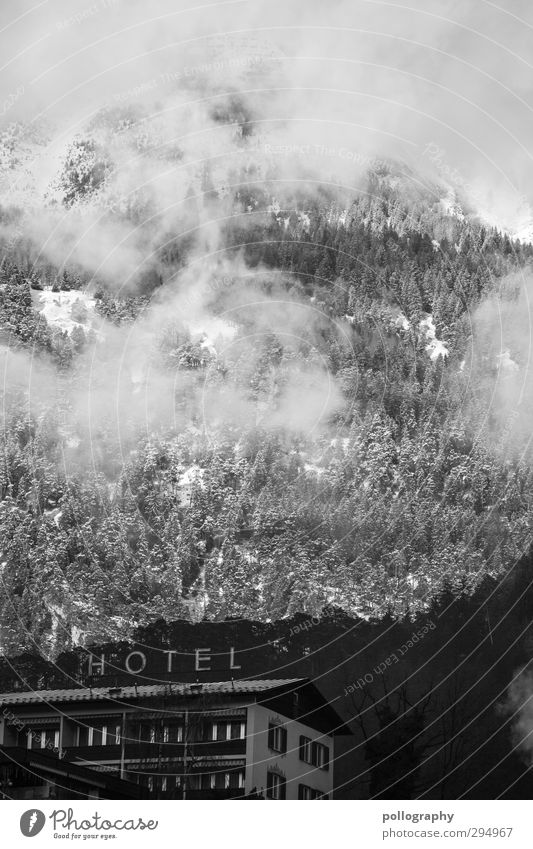 im Schutz eines Giganten Natur Landschaft Pflanze Wolken Sonne Winter Schönes Wetter Schnee Hügel Felsen Alpen Berge u. Gebirge Stadtrand Haus Hochhaus Hotel