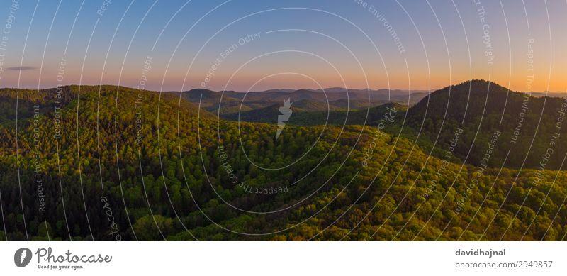 Pfälzerwald Ferien & Urlaub & Reisen Tourismus Ausflug Abenteuer Berge u. Gebirge wandern Umwelt Natur Landschaft Himmel Horizont Frühling Schönes Wetter Baum