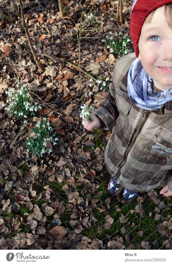 Schneeglöckchen und blaue Augen Mensch Kind Pflanze Blume Frühling Blüte Freundschaft Kindheit Kleinkind Blumenstrauß 3-8 Jahre schenken Muttertag Schneeglöckchen pflücken Frühlingsblume