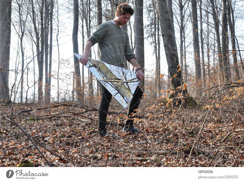 TRIANGLE N° 3 Mensch Natur Jugendliche Baum Blatt Erholung Wald Gesicht Erwachsene Umwelt Junger Mann Haare & Frisuren 18-30 Jahre Kopf Beine außergewöhnlich