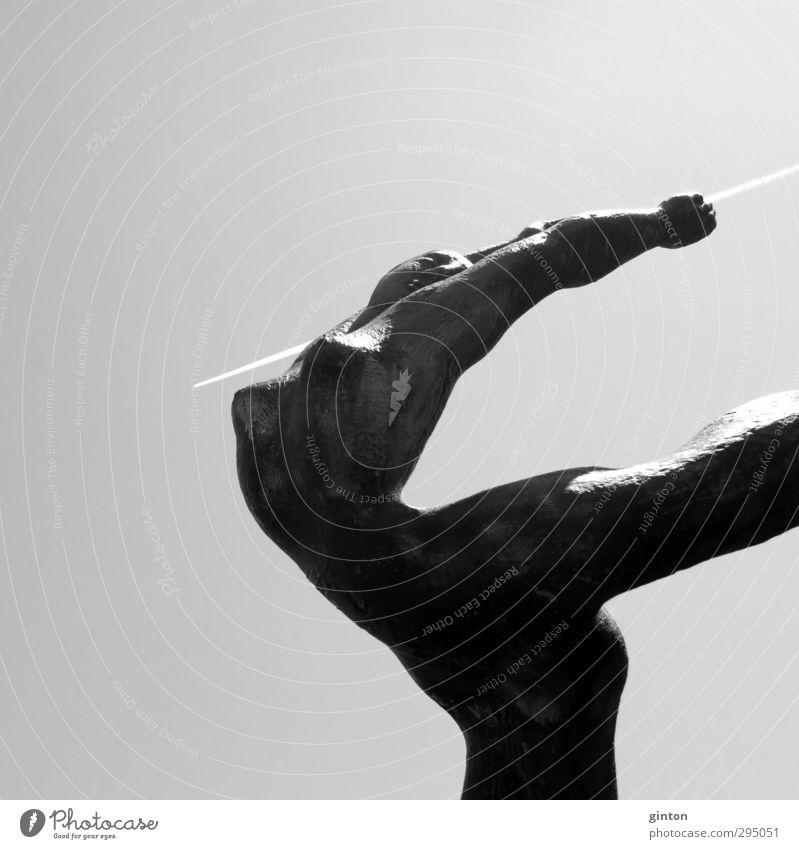 Feuervogel weiß nackt Freude schwarz Erotik Gefühle grau Stimmung Kunst Kraft Verkehr Luftverkehr ästhetisch Flugzeug Lebensfreude Kultur