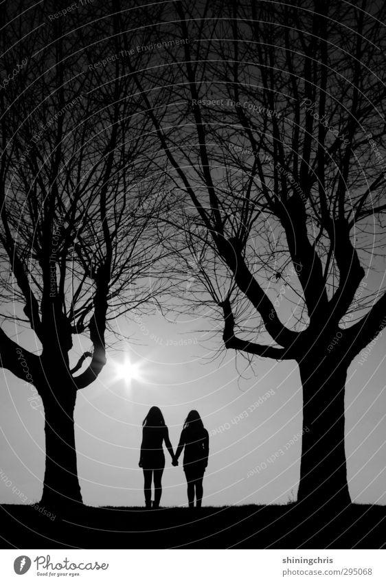 zusammen / bff Mensch Kind Himmel Natur Jugendliche Baum ruhig Winter Junge Frau Wald feminin Freiheit Paar Freundschaft Zusammensein Park