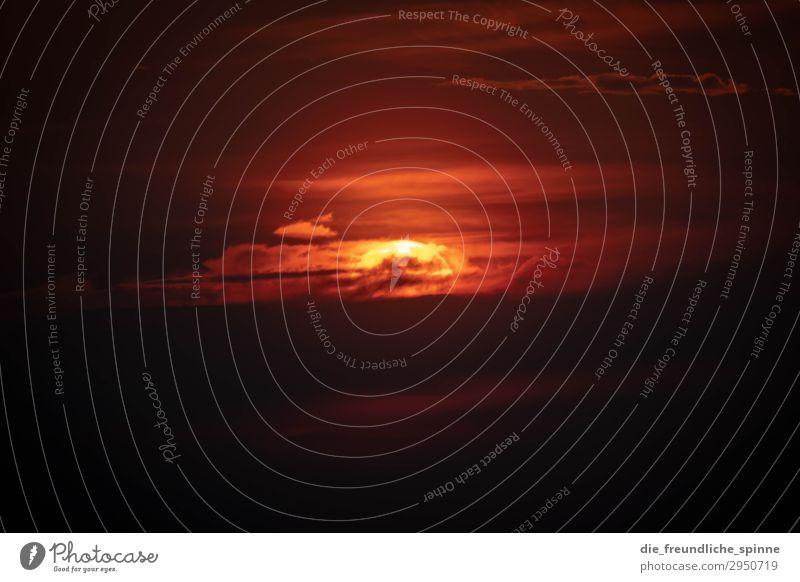 mystischer Sonnenaufgang Gegenlicht schwarz gold Sonnenuntergang rot gelb Außenaufnahme Dämmerung Sonnenlicht Menschenleer Abend Landschaft Sonnenstrahlen