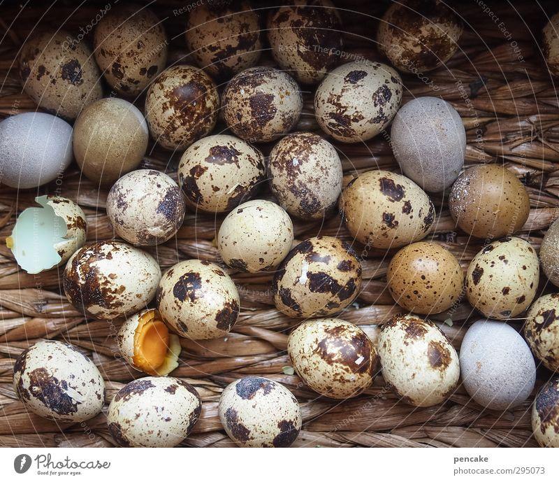 nesthocker Bioprodukte Natur Zeichen fleißig Ei Wachtelei Korb Weidenkorb viele Nest rollen Ostern Osterei Osternest Dekoration & Verzierung Postkarte