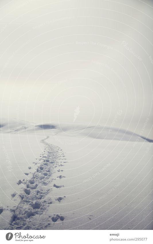 ENDlich Umwelt Natur Landschaft Himmel Horizont Winter Schnee hell kalt leer Spuren Schneespur Ferne Endzeitstimmung Farbfoto Gedeckte Farben Außenaufnahme