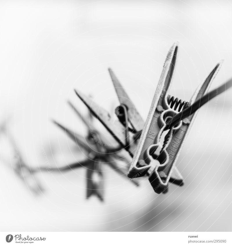 Abhängen Häusliches Leben Wohnung Haushälterin Seil Wäscheleine Klammer Wäscheklammern Luft Frühling Sommer Wetter Schönes Wetter Kunststoff Linie alt grau