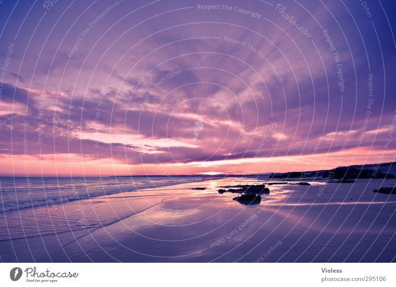 It's me Natur Landschaft Sonnenaufgang Sonnenuntergang Sommer Schönes Wetter Küste Strand Erholung Algarve violett Violetthimmel Farbfoto Experiment