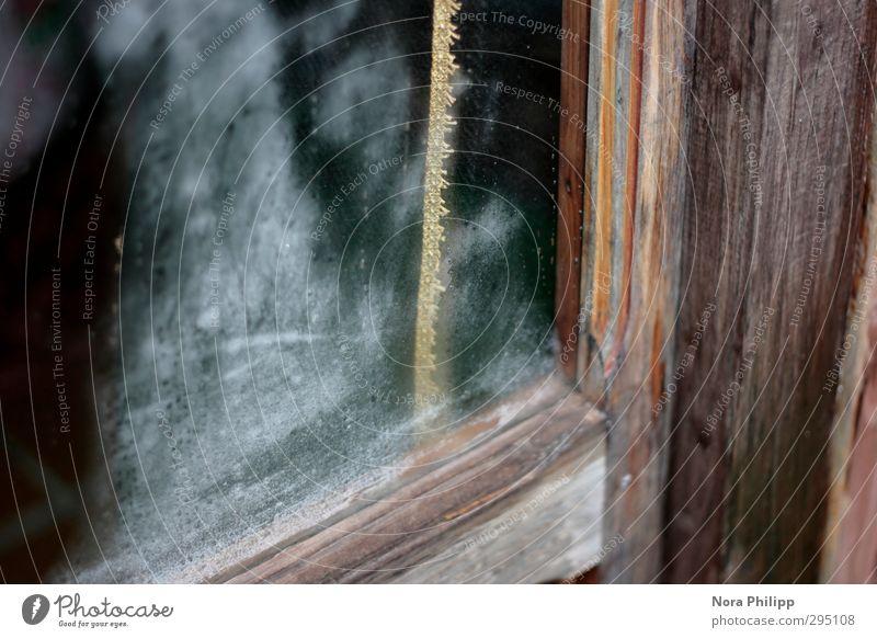 detail verliebung Ferien & Urlaub & Reisen Wohnung Raum Sardinien Italien Dorf Haus Traumhaus Bauwerk Fenster Tür Goldband ästhetisch elegant glänzend nass