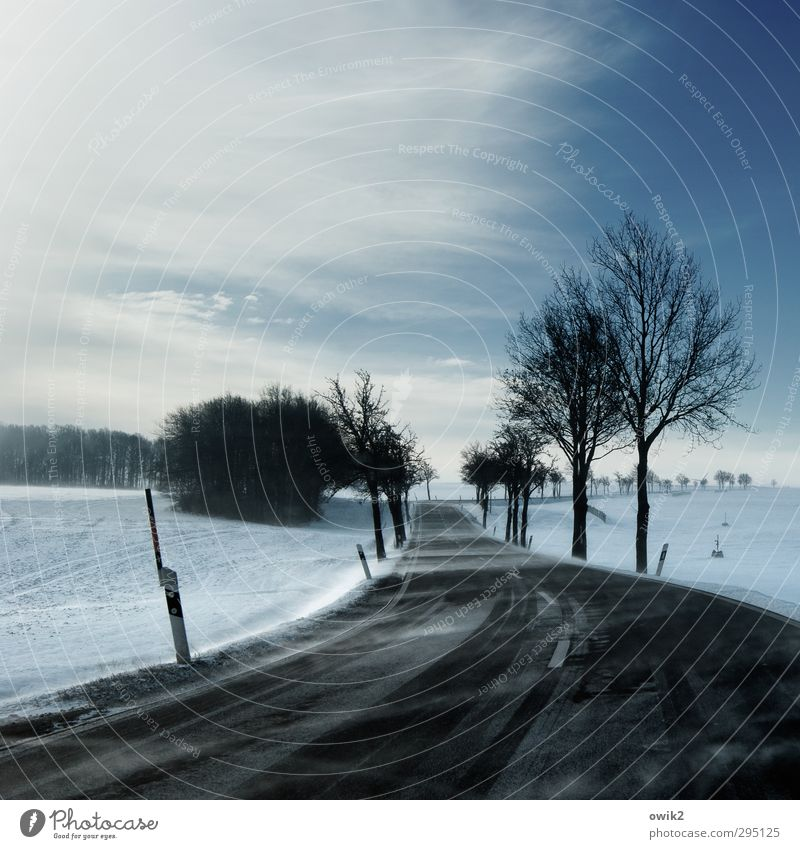 Sächsisch Lappland Himmel Natur blau Ferien & Urlaub & Reisen Pflanze Baum Landschaft Wolken Winter Wald Umwelt Ferne kalt Schnee Straße Horizont